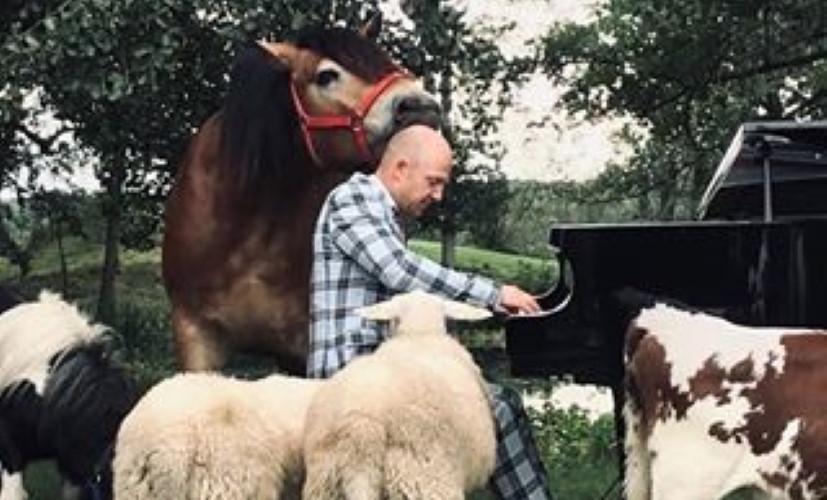 Aksel Kolstad spiller bland dyr
